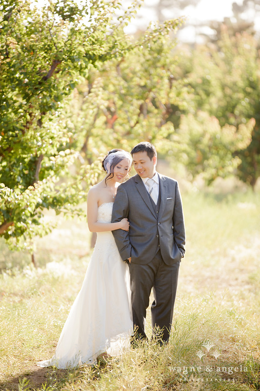 los altos history museum wedding photographer